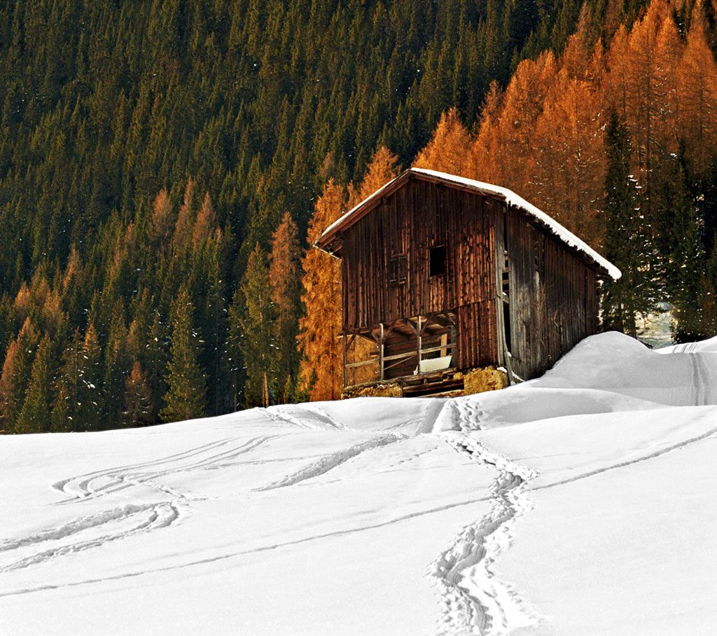 Cabin at the Alps